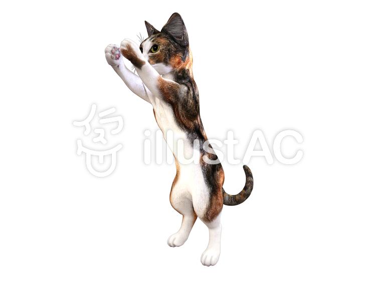 キャッチする子猫(ミケ猫)のイラスト