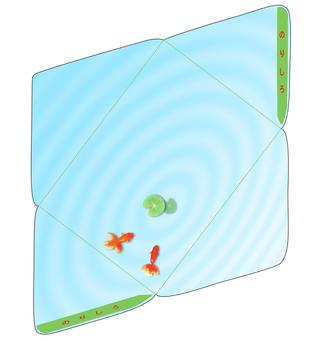 Goldfish envelope