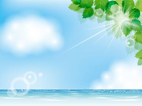 Summer image 021