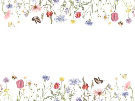 꽃 테두리 188- 자연 정원 테두리