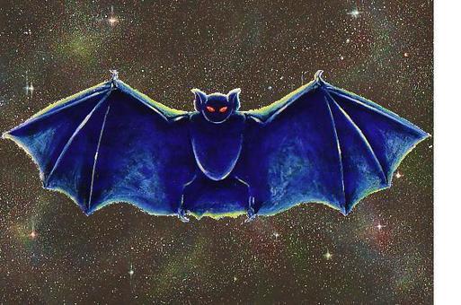 蝙蝠和天空