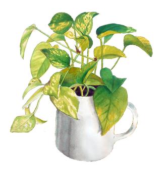 Mug of Potos