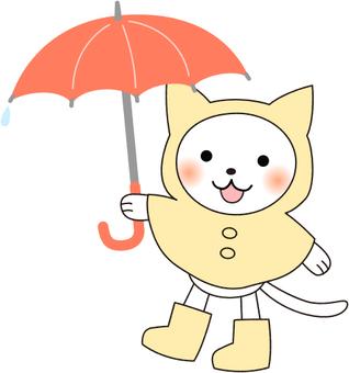 White cat in the rainy season