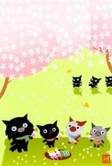 꽃놀이 가자! ! 고양이 (야옹이)