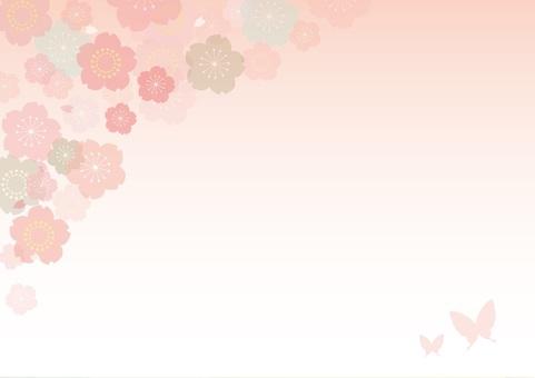 Cherry blossom background 11