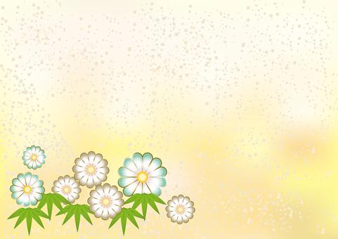New Year's Pattern Chrysanthemum 31