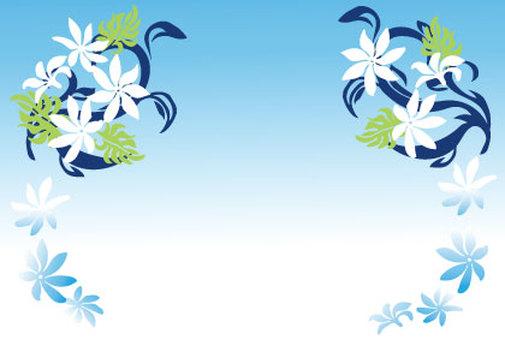 Bouquet - Plumeria 02
