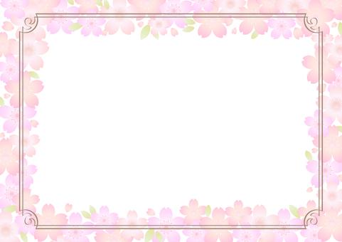 벚꽃 소재 311