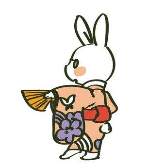 Kimono rabbit