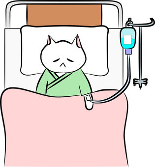 Nyanko hospitalization