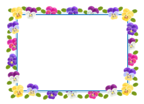 Viola frame