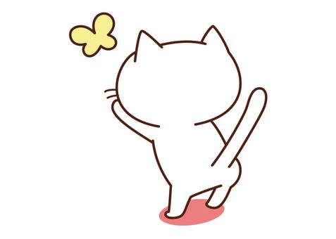 Playing white cat