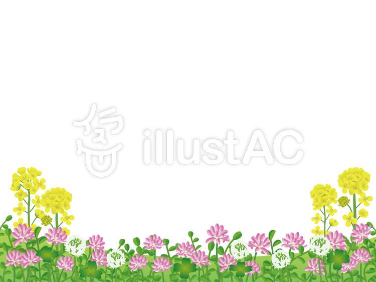 れんげシロツメクサ菜の花の春の花フレームイラスト No 395180無料