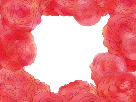 Ranunculus frame red