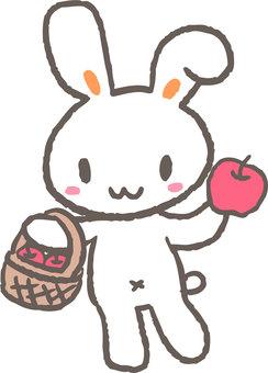蘋果和兔子