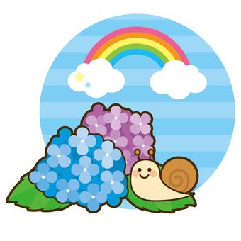 Rainy season hydrangea and snail