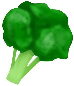 Broccoli (no wire)