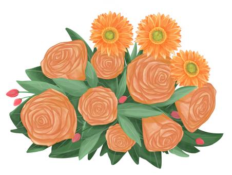 거베라와 갈색의 장미 (2)