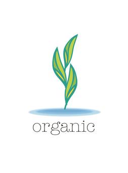 유기농 무농약