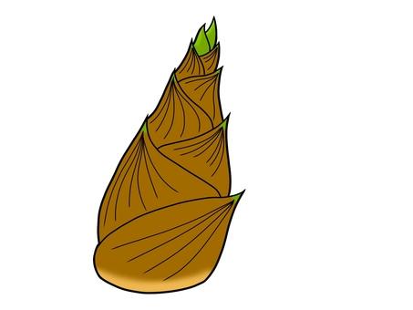 【春天的味道】這個例子1竹子