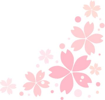 Cherry Blossom Cut