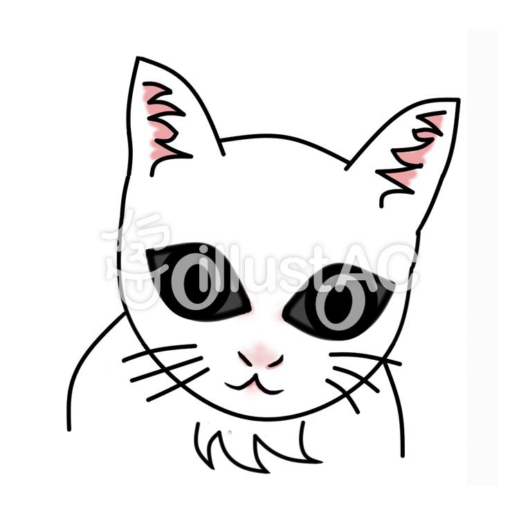 白い子猫イラスト No 627695無料イラストならイラストac