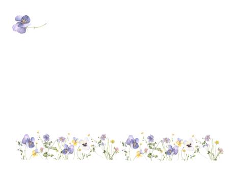 Flower frame 241 - Pansy cool colored flower frame
