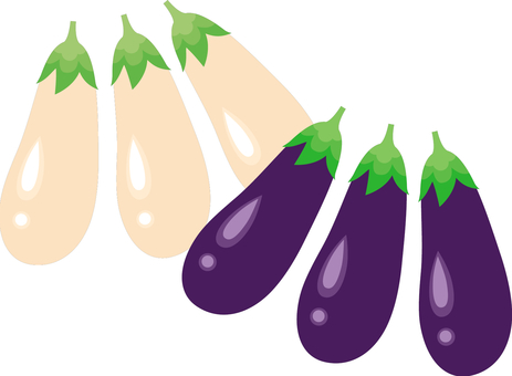 Two types of eggplant