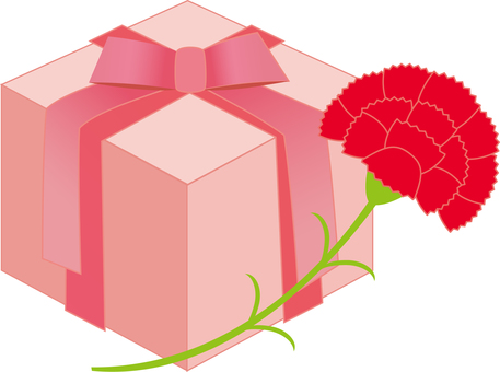 Carnation and present box