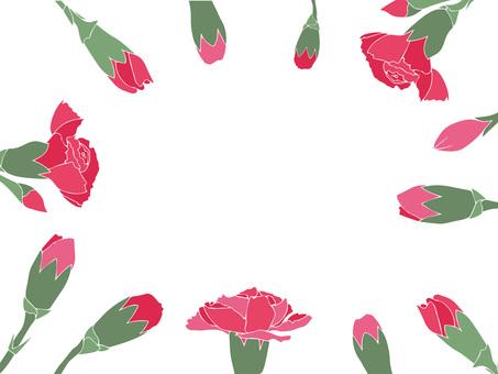 Carnation frame background