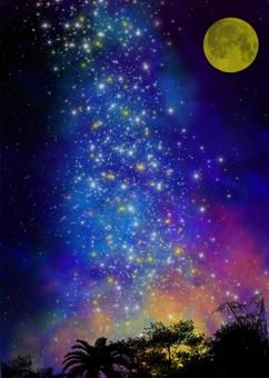 The moonlit starry sky
