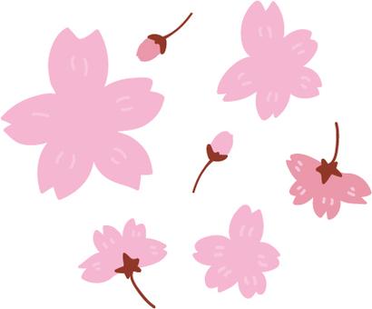 수공 벚꽃