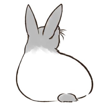 Usagi ②