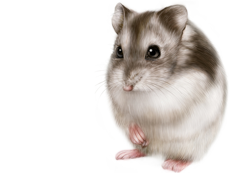 Graphic Djangarian hamster landscape