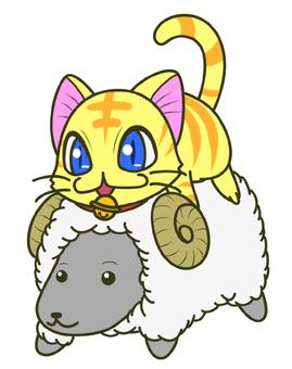 Dry cat 1 (not)