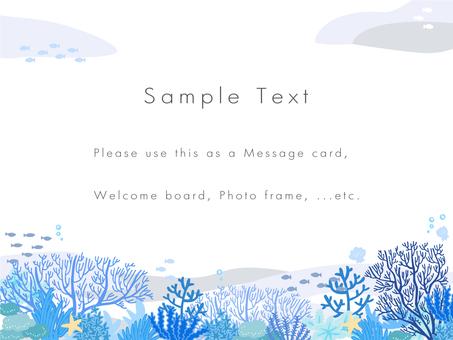 Coral Sea Postcard 04