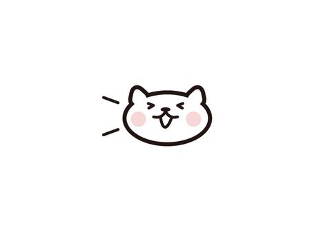 White cat joy