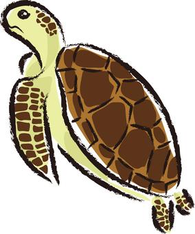Sea turtle 01 - color 1