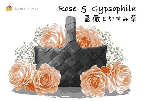 Flowers green basket rose pink rose a