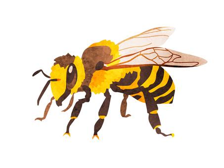 Animal_worm_bee_watercolor