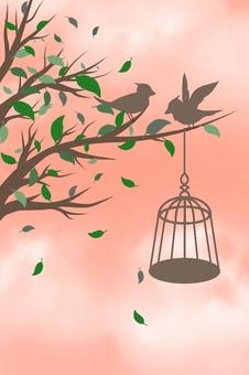 Bird illustrations (background red)