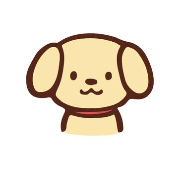 아이콘 개
