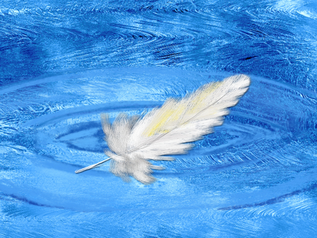 A wing floating on the water surface