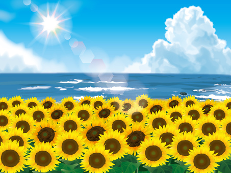 Sunflower field and sea