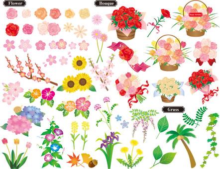Çiçek seti