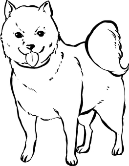 "Hand-drawn illustration ""Dog"""