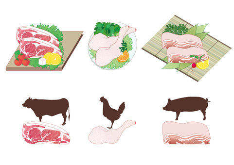 Display Recommended Raw Material 20 items _ Meat