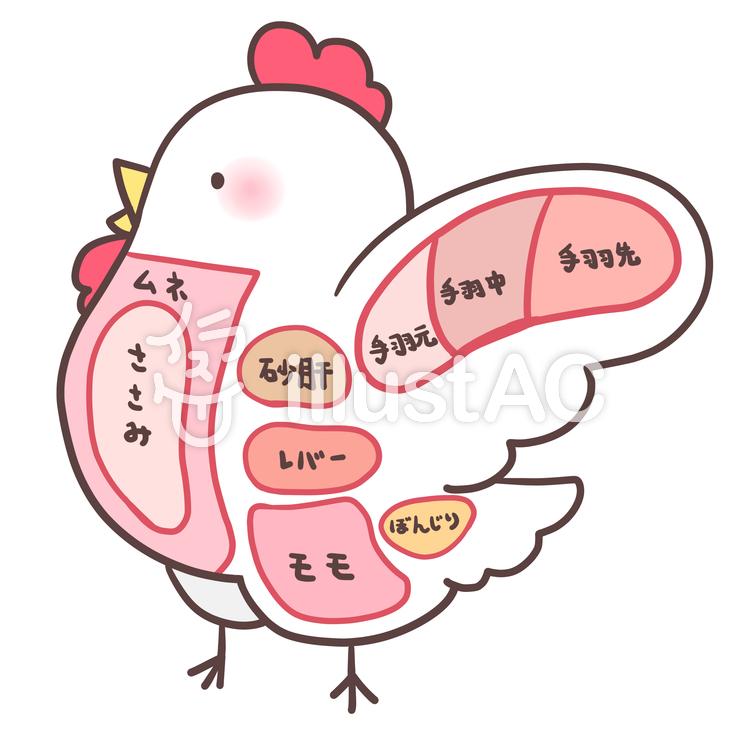 鶏肉の部位イラスト No 947004無料イラストならイラストac
