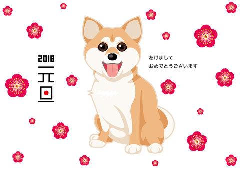 New year's card dog Shiba Inu
