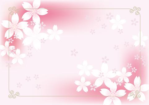 Sakura & Sakura 2